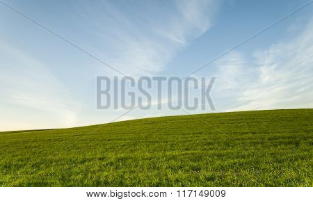 Green Field And Blue Cloudy Sky Environment