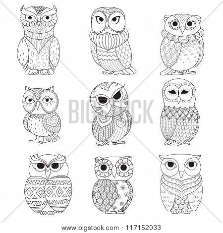 9 Owls Coloring Books