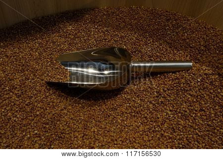 Raw buckwheat groats and iron scoop closeup