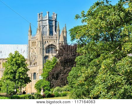 Glimpse Of The Cathedral Of Ely Behind The Trees