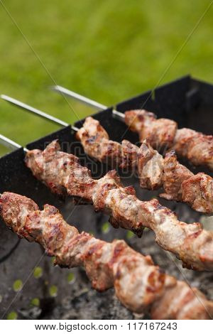 Fresh juicy meat shashlik on the grill. ** Note: Shallow depth of field