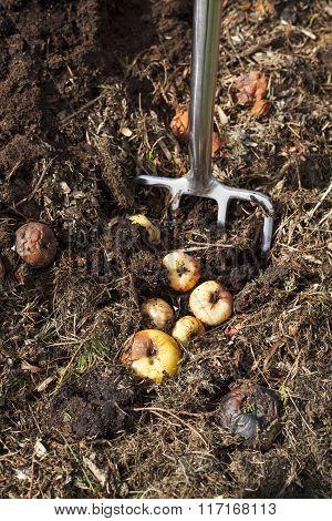 Image of garden fork in a compost bin.