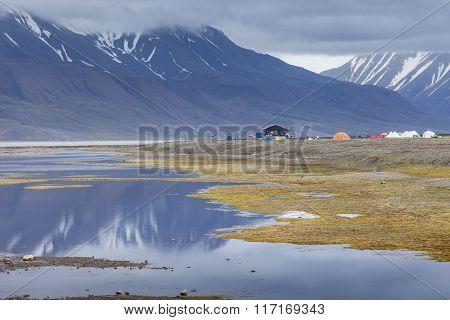 Arctic Tundra In Summer, Svalbard, Norway