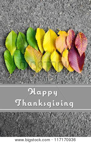 Autumn leaves background and text Happy Thanksgiving