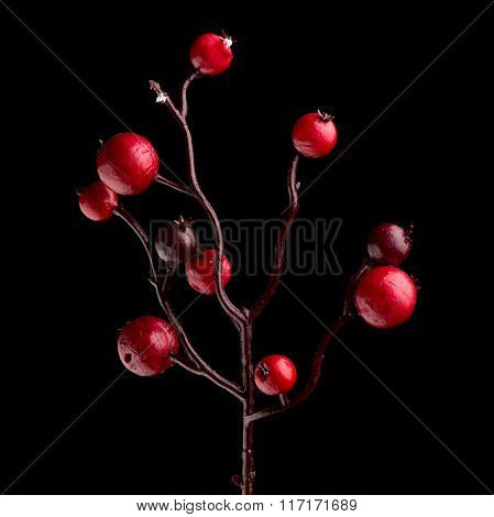 Red Christmas Decoration Branches