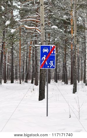 The Road Sign Costs In The Pine Wood.