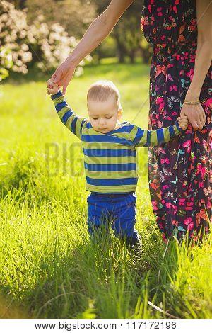 Family Having Fun In Green Blooming Spring Garden On Sunset Time