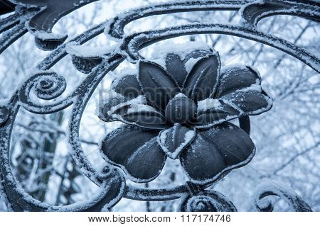 Old Beautiful Cast Iron Fence Flower