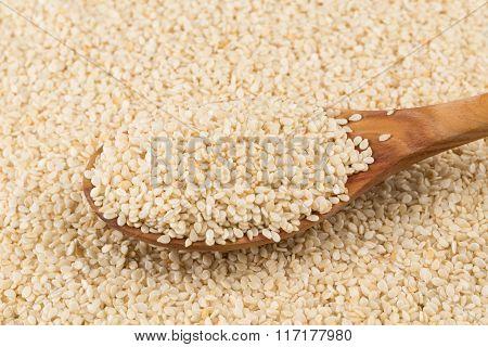 Organic Natural Sesame Seeds