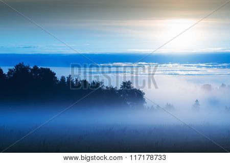 misty sunrise over meadow