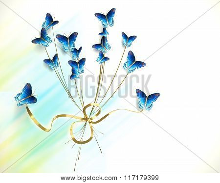 Bouquet Of Butterflies On White Background