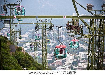 Cable Cars Over Tropical Trees In Hong Kong