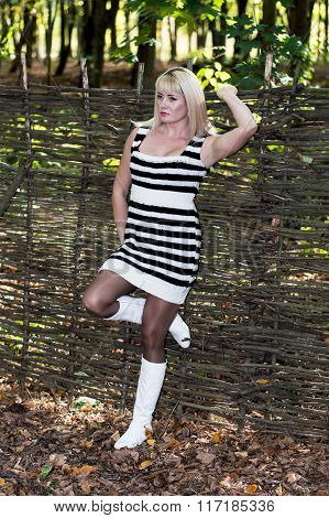 The Beautiful Woman At A Fence, Wattled From Branches