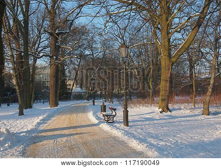 Winter alley.