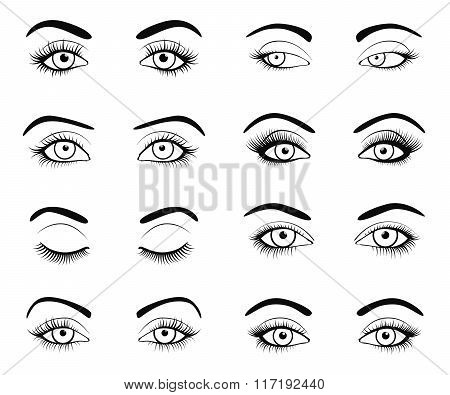 Set of female eyes and brows image with beautifully fashion eyelashes. Vector illustration for healt