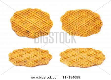 Flat cheese cookie isolated