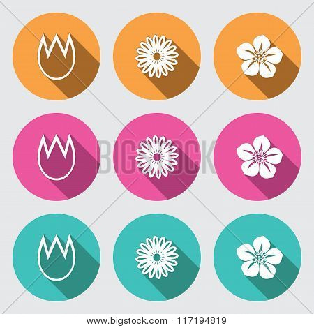 Flower icon set. Tulip, camomile, daisy, petunia, orchid. Floral symbol. White sign on round rose, o