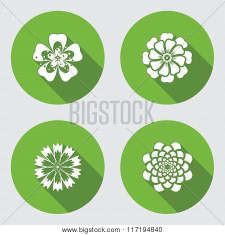 Flower icons set. Chamomile, geranium, daisy, chrysanthemum, cornflower. Floral symbol. Round green