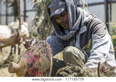 OROMIA, ETHIOPIA-NOVEMBER 6, 2014: Unidentified man tends to a beehive without protective clothing in Ethiopia