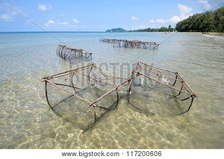 Crab And Lobster Fishing Pots Showing At Low Tide Asia
