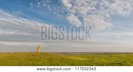 Landscape Of Wild Steppe