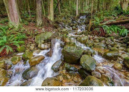 Beautiful Mountain River or Creek at West Vancouver, Canada.