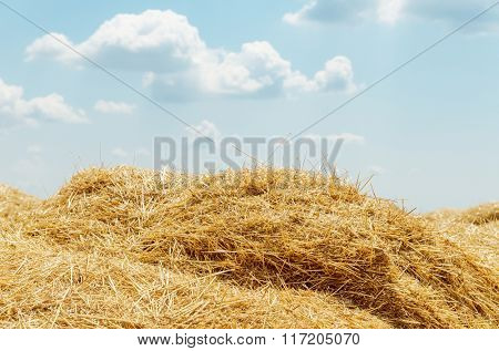 heap of straw and clouds over it. soft focus