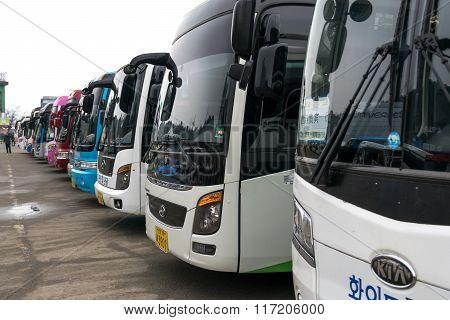 Korean Tourist Bus.
