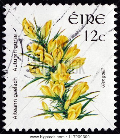 Postage Stamp Ireland 2006 Autumn Gorse, Evergreen Shrub