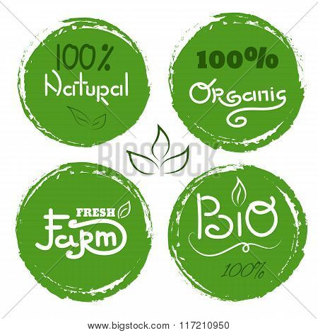 Eco Icon With Leaf, Vector Bio Sign. Vector Banner 100% Natural Organic Concept With Leaves. Waterco