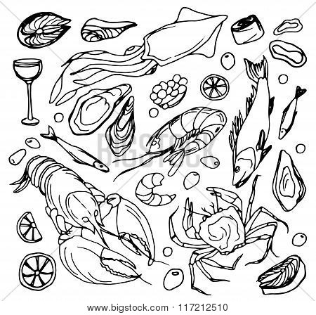 Doodle vector sea food