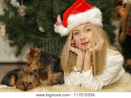 Beautiful Young Girl In Santa Red Hat Near Christmas Tree
