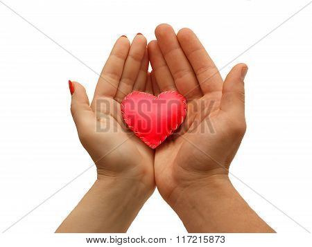 Woman's Hand And Men's Hand Together   Hold A Red Heart, Isolated  On White Background