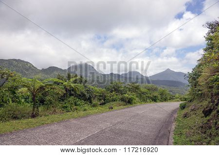 Winding road through Dominica, Caribbean islands