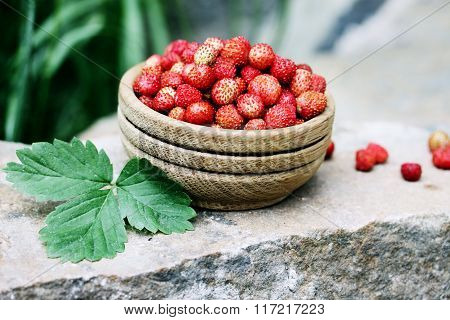strawberry  on the stone