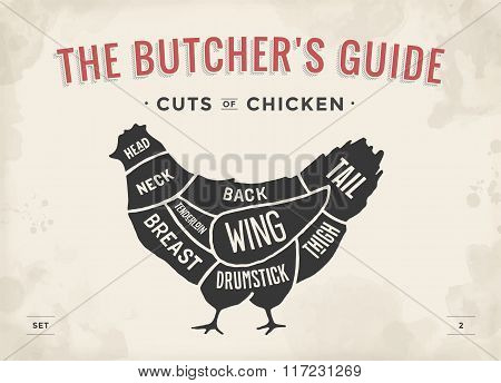 Cut Of Meat Set. Poster Butcher Diagram And Scheme - Chicken. Vintage Typographic Hand-drawn. Vector