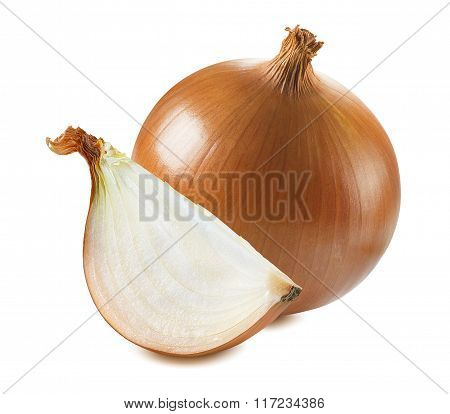 Whole Common Onion Quarter Piece Isolated On White Background