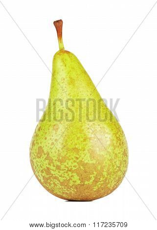 Fresh Conference Pear