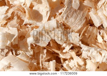 Wood Chips And Sawdust Texture
