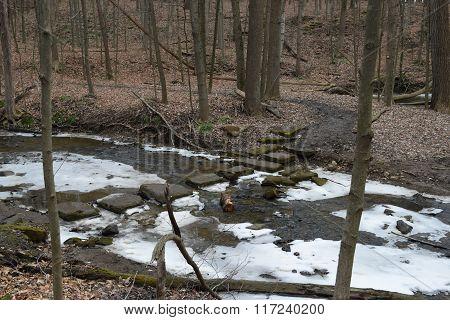 stepping stones across a freezing creek