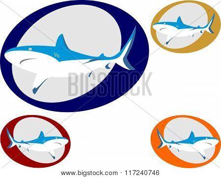 stock logo shark
