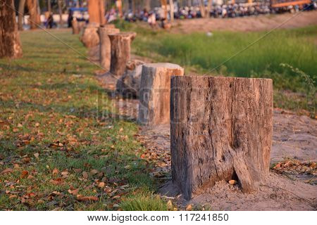 Long rows of timber