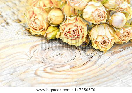 Withered rose on wooden background.
