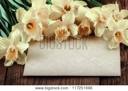 Vintage daffodil flowers with paper sheet