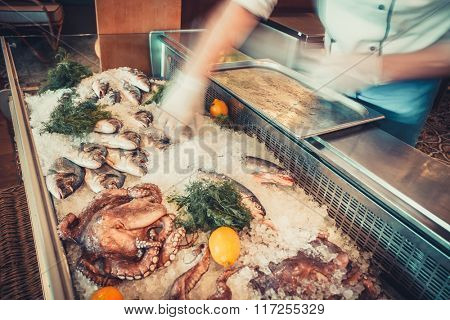 Delicious Fresh seafood on ice with herbs and lemons and human hands