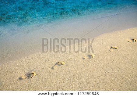 Diagonal Footprints On Sand Beach With Sea Edge Line