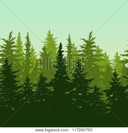 Vector Horizontal Seamless Background With Green Pine Or Fir-tree Forest.