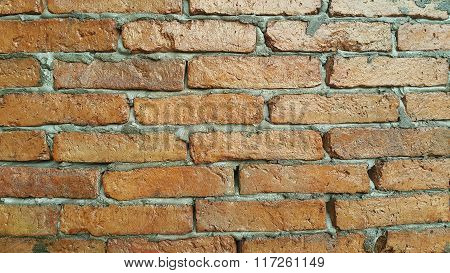 The beautiful brick wall.