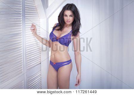 Sexy Brunette Lady Posing In Lingerie.