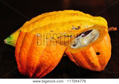 Ripe Cocoa Fruit Sliced In Half Exposing The Seeds